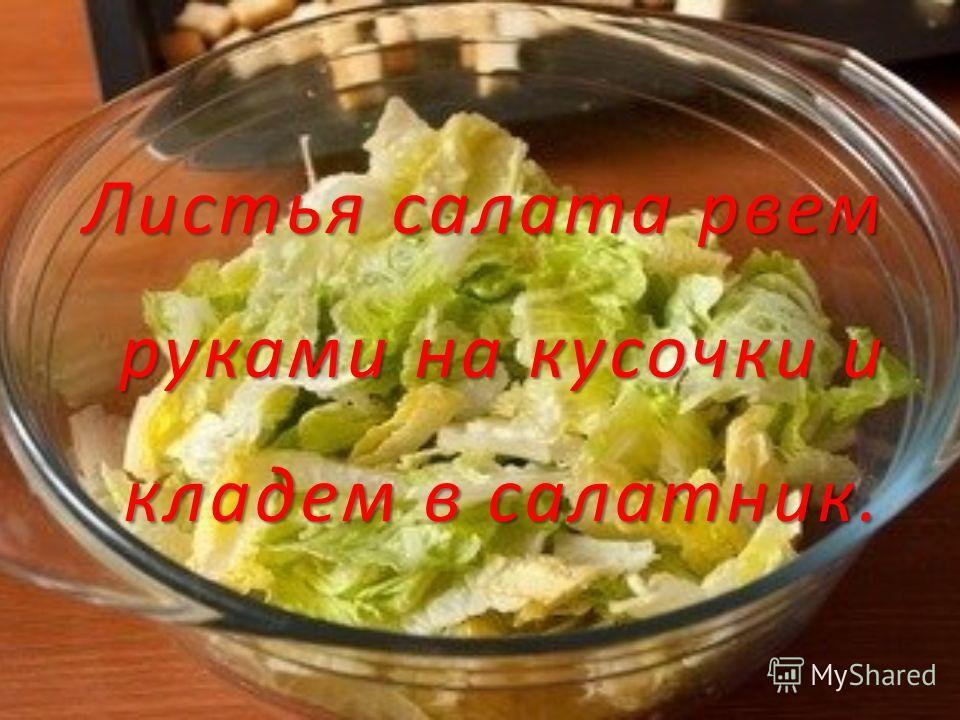 Листья салата рвем руками на кусочки и кладем в салатник.