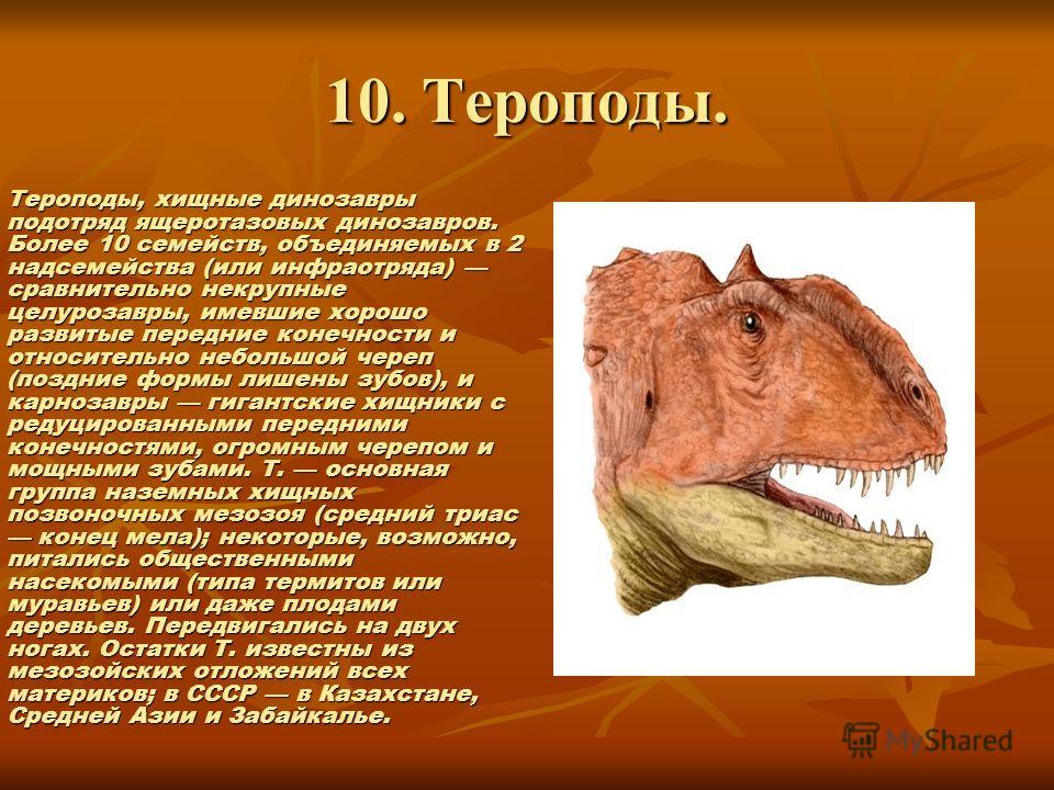 10. Тероподы. Тероподы, хищные динозавры подотряд ящеротазовых динозавров. Более 10 семейств, объединяемых в 2 надсемейства (или инфраотряда) сравнительно некрупные целурозавры, имевшие хорошо развитые передние конечности и относительно небольшой чер