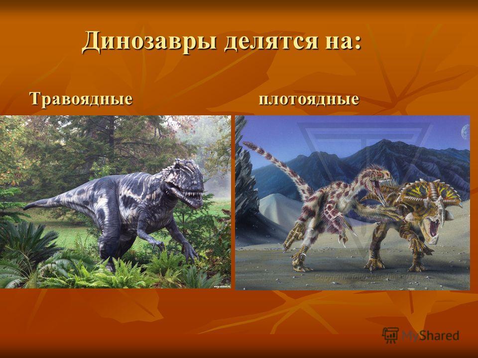 Динозавры делятся на: Травоядные плотоядные Динозавры делятся на: Травоядные плотоядные