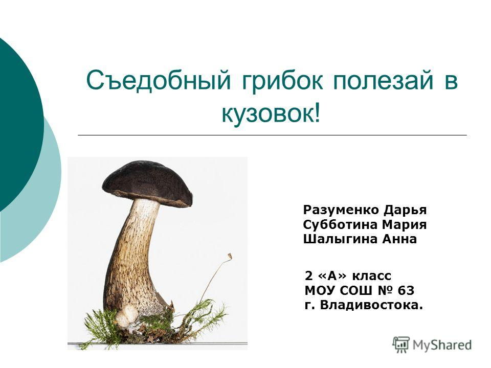 Съедобный грибок полезай в кузовок! Разуменко Дарья Субботина Мария Шалыгина Анна 2 «А» класс МОУ СОШ 63 г. Владивостока.