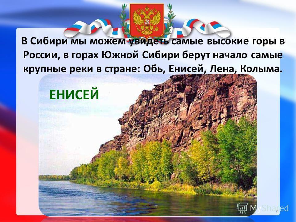 ЕНИСЕЙ В Сибири мы можем увидеть самые высокие горы в России, в горах Южной Сибири берут начало самые крупные реки в стране: Обь, Енисей, Лена, Колыма. 9