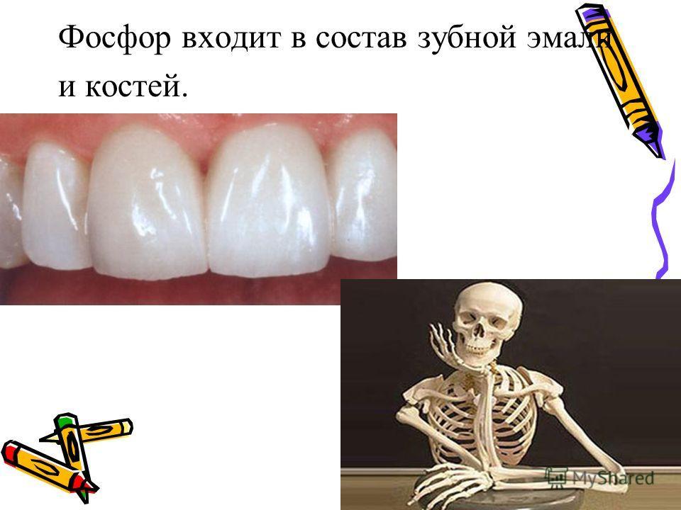 Фосфор входит в состав зубной эмали и костей.