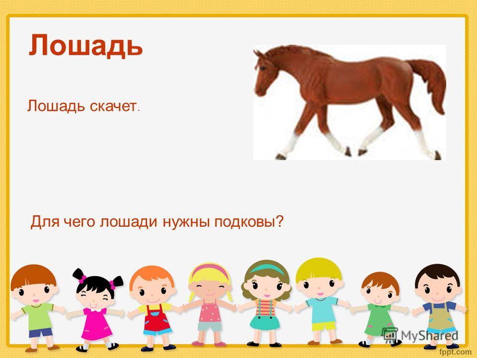 Лошадь Для чего лошади нужны подковы? Лошадь скачет.