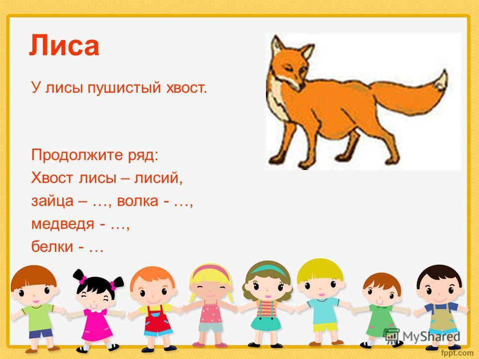Лиса Продолжите ряд: Хвост лисы – лисий, зайца – …, волка - …, медведя - …, белки - … У лисы пушистый хвост.