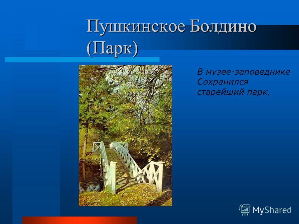 Пушкинское Болдино (Парк) В музее-заповеднике Сохранился старейший парк.
