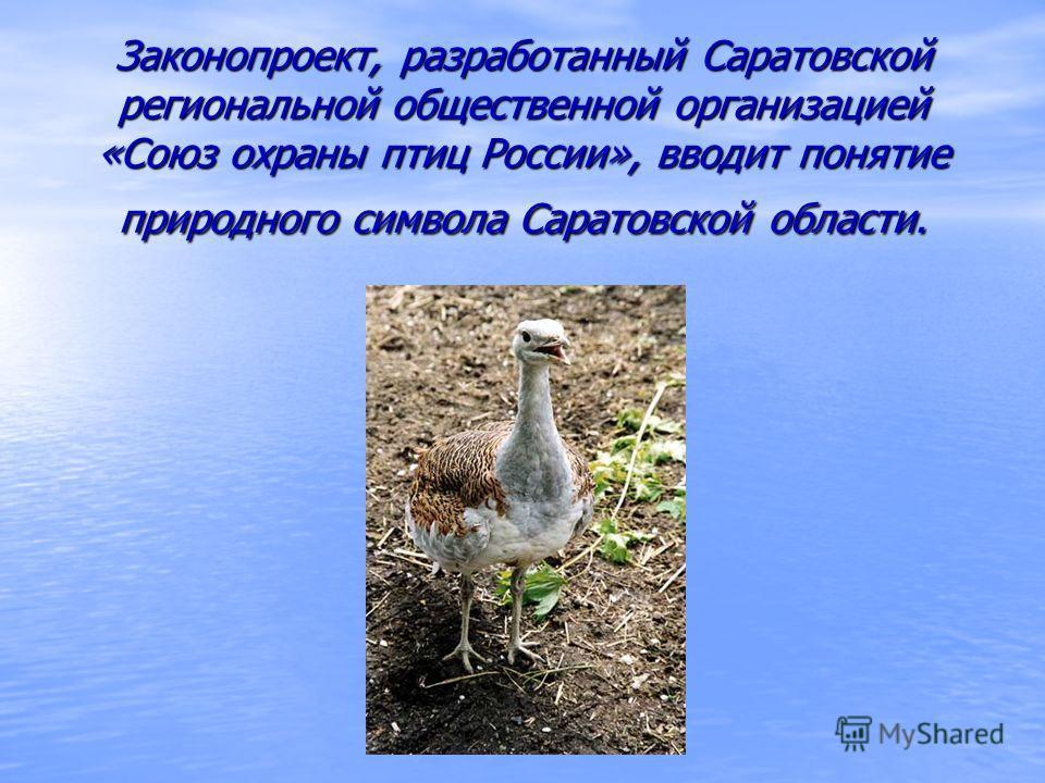 Законопроект, разработанный Саратовской региональной общественной организацией «Союз охраны птиц России», вводит понятие природного символа Саратовской области. Законопроект, разработанный Саратовской региональной общественной организацией «Союз охра