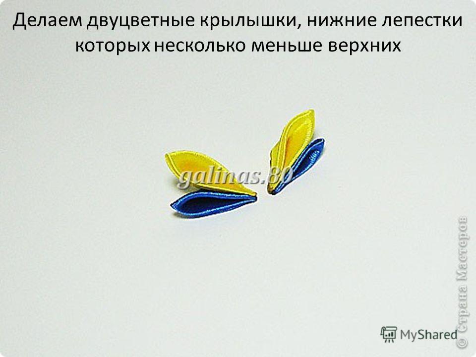 Делаем двуцветные крылышки, нижние лепестки которых несколько меньше верхних