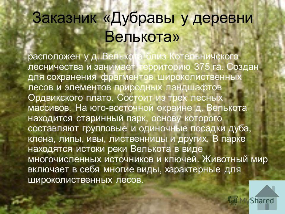 Заказник «Дубравы у деревни Велькота» расположен у д. Велькота близ Котельничского лесничества и занимает территорию 375 га. Создан для сохранения фрагментов широколиственных лесов и элементов природных ландшафтов Ордвикского плато. Состоит из трех л