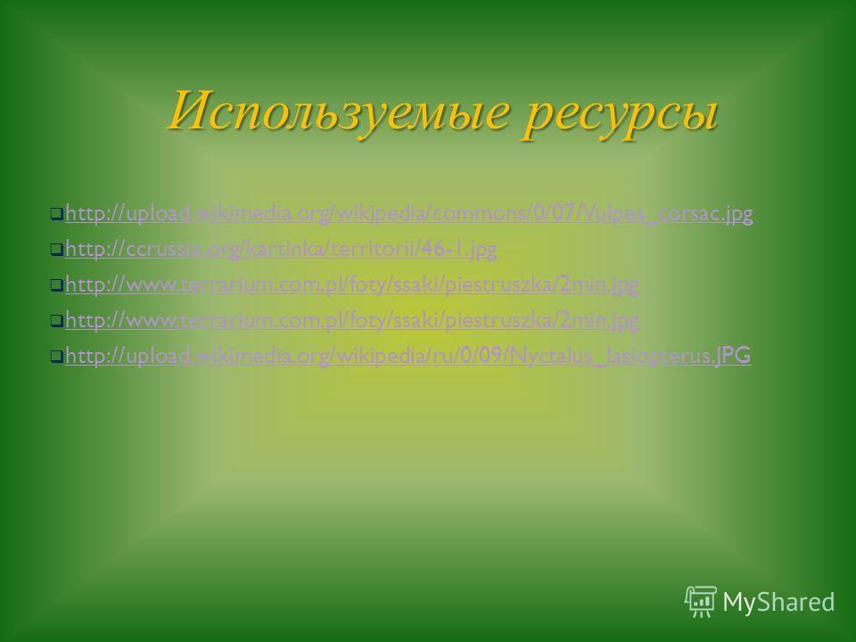 Используемые ресурсы http://upload.wikimedia.org/wikipedia/commons/0/07/Vulpes_corsac.jpg http://ccrussia.org/kartinka/territorii/46-1.jpg http://www.terrarium.com.pl/foty/ssaki/piestruszka/2min.jpg http://upload.wikimedia.org/wikipedia/ru/0/09/Nycta