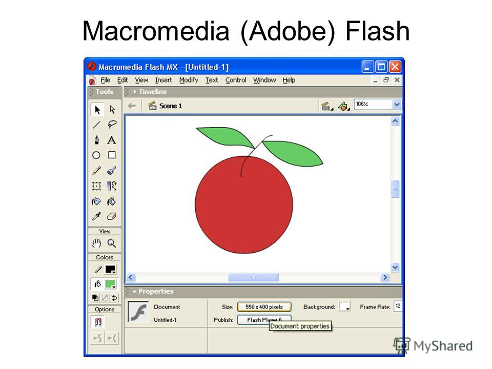 Macromedia (Adobe) Flash
