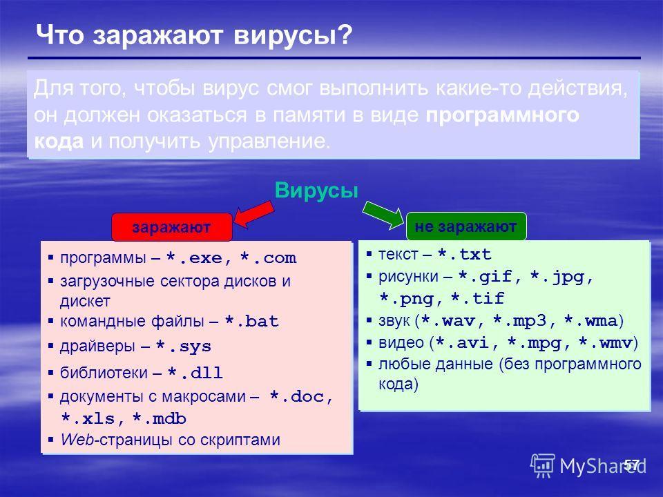 57 Что заражают вирусы? Вирусы программы – *. exe, *. com загрузочные сектора дисков и дискет командные файлы – *.bat драйверы – *. sys библиотеки – *. dll документы с макросами – *.doc, *.xls, *.mdb Web-страницы со скриптами программы – *. exe, *. c