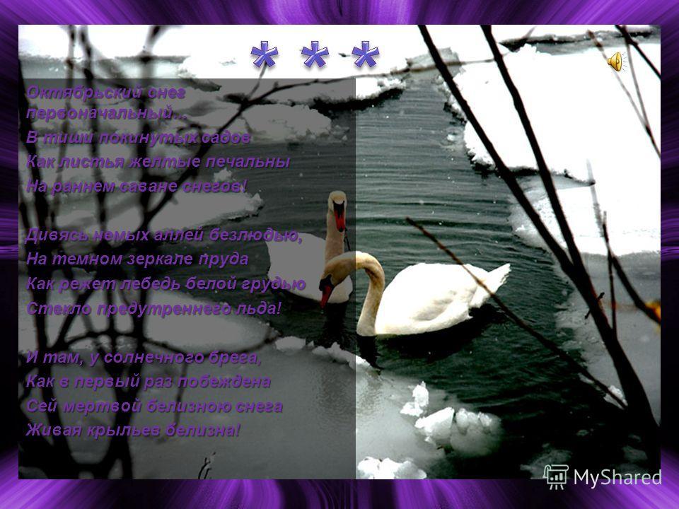 Октябрьский снег первоначальный... В тиши покинутых садов Как листья желтые печальны На раннем саване снегов! Дивясь немых аллей безлюдью, На темном зеркале пруда Как режет лебедь белой грудью Стекло предутреннего льда! И там, у солнечного брега, Как