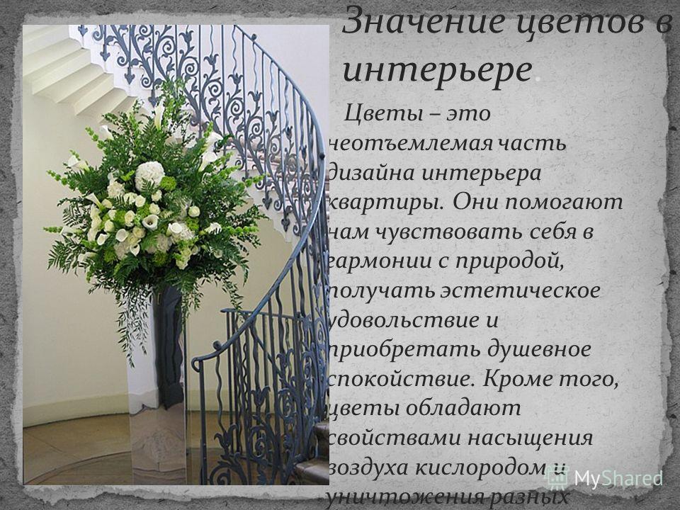 Цветы – это неотъемлемая часть дизайна интерьера квартиры. Они помогают нам чувствовать себя в гармонии с природой, получать эстетическое удовольствие и приобретать душевное спокойствие. Кроме того, цветы обладают свойствами насыщения воздуха кислоро