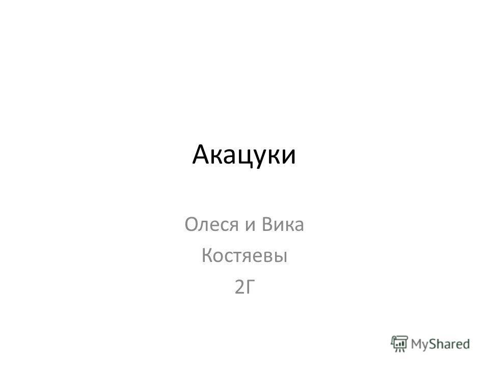 Акацуки Олеся и Вика Костяевы 2Г