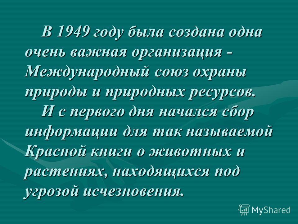 В 1949 году была создана одна очень важная организация - Международный союз охраны природы и природных ресурсов. И с первого дня начался сбор информации для так называемой Красной книги о животных и растениях, находящихся под угрозой исчезновения. В