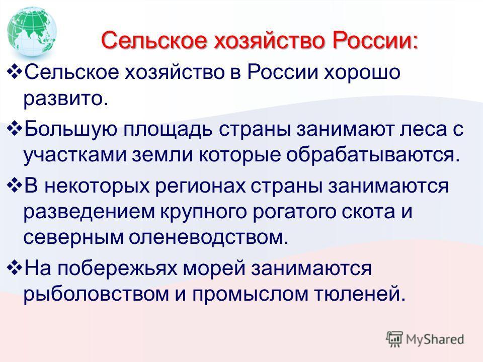 Сельское хозяйство России: Сельское хозяйство в России хорошо развито. Большую площадь страны занимают леса с участками земли которые обрабатываются. В некоторых регионах страны занимаются разведением крупного рогатого скота и северным оленеводством.