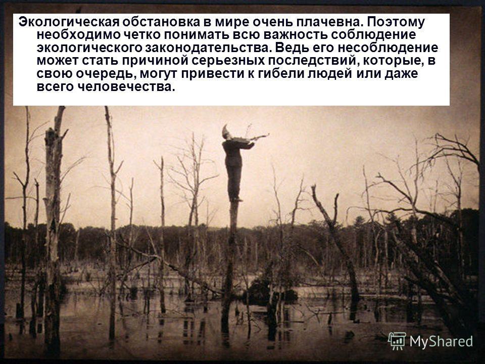 Экологическая обстановка в мире очень плачевна. Поэтому необходимо четко понимать всю важность соблюдение экологического законодательства. Ведь его несоблюдение может стать причиной серьезных последствий, которые, в свою очередь, могут привести к гиб