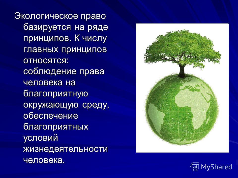 Экологическое право базируется на ряде принципов. К числу главных принципов относятся: соблюдение права человека на благоприятную окружающую среду, обеспечение благоприятных условий жизнедеятельности человека.
