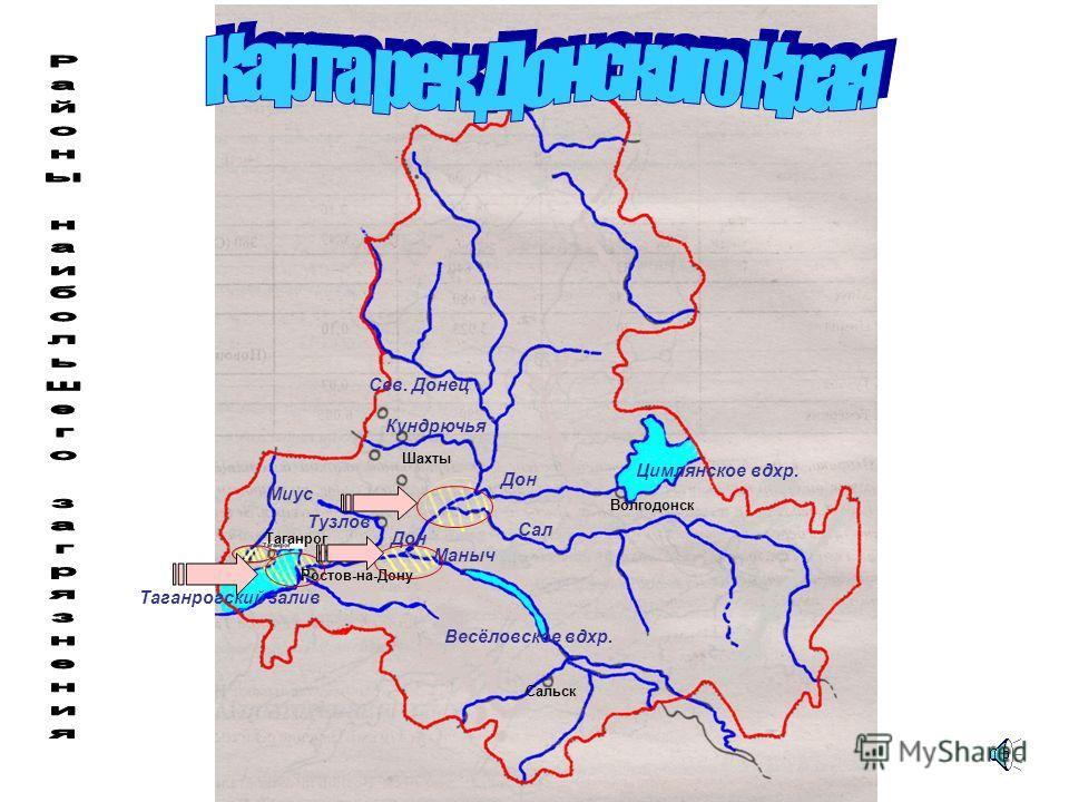 Загрязненность сточных вод рек Донского края Дон Маныч Северский Донец Тузлов 30,85 млн. куб.м 49,9 млн. куб.м 35,6 млн.куб.м 70 млн.куб.м 37,5 млн.куб.м 66,7 млн.куб.м 284 млн.куб.м 1205 млн.куб.м -загрязненные воды -общий объем сточных вод