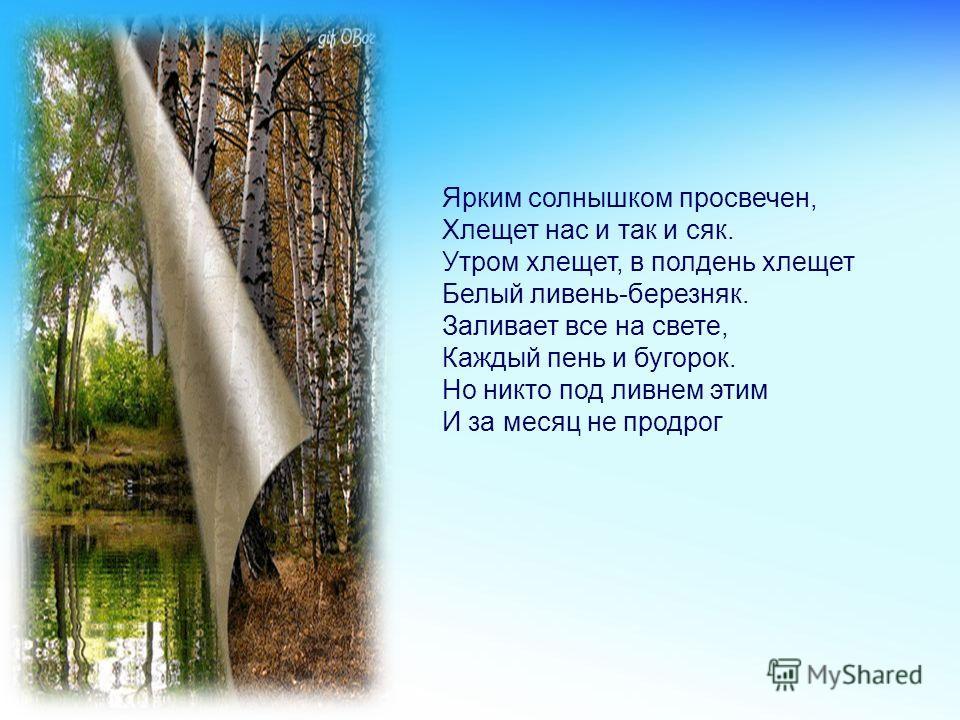 Оглянулся лось пугливо: Не узнал себя в реке. Березняк, как белый ливень, В белом, белом городке. Белый ливень, Белый ливень – Березняк.