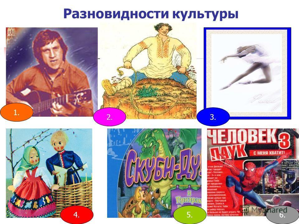 Разновидности культуры 1. 4.5.6. 3.2.