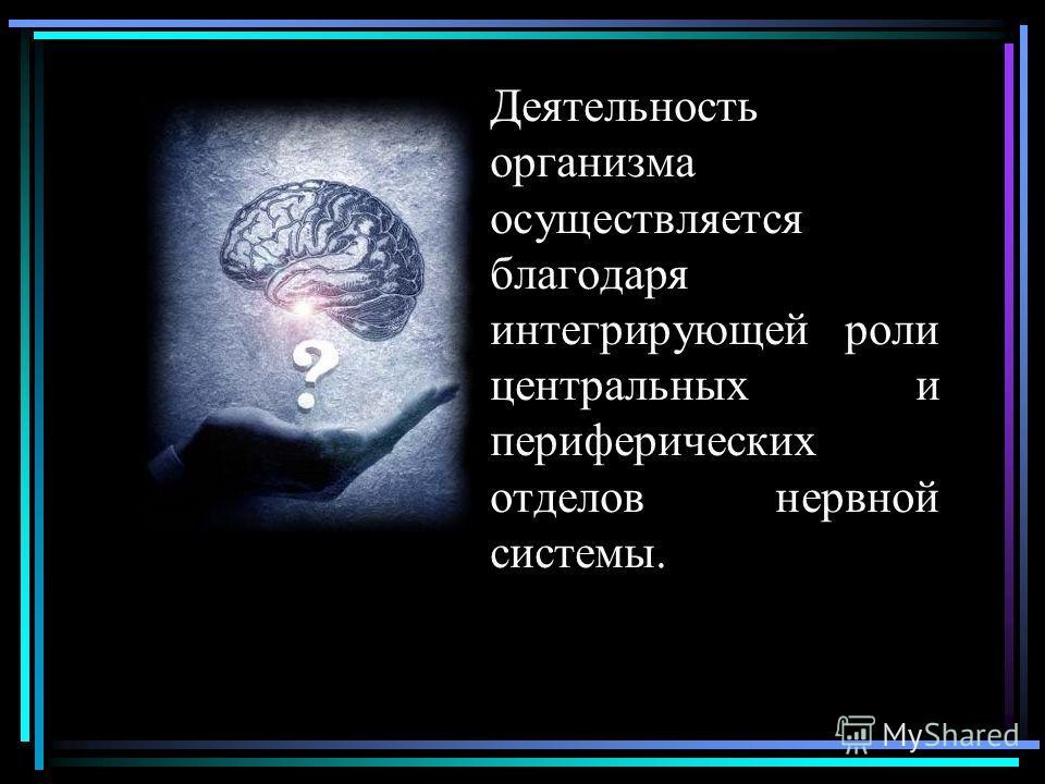 Деятельность организма осуществляется благодаря интегрирующей роли центральных и периферических отделов нервной системы.
