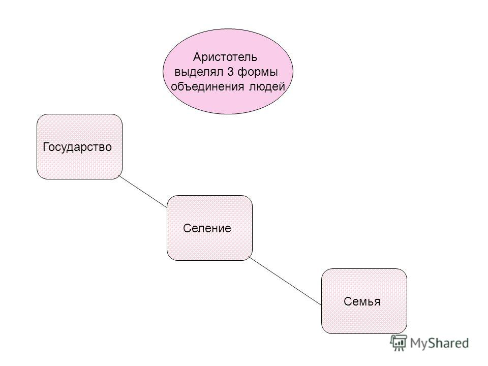 Аристотель выделял 3 формы объединения людей Семья Селение Государство
