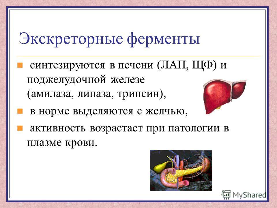 Экскреторные ферменты синтезируются в печени (ЛАП, ЩФ) и поджелудочной железе (амилаза, липаза, трипсин), в норме выделяются с желчью, активность возрастает при патологии в плазме крови.