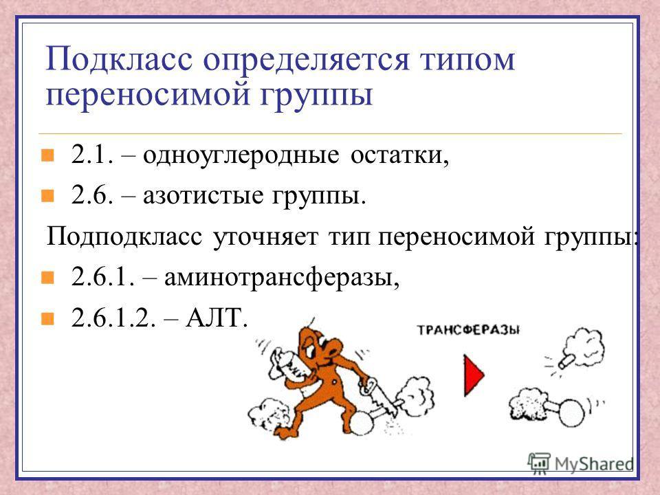 Подкласс определяется типом переносимой группы 2.1. – одноуглеродные остатки, 2.6. – азотистые группы. Подподкласс уточняет тип переносимой группы: 2.6.1. – аминотрансферазы, 2.6.1.2. – АЛТ.