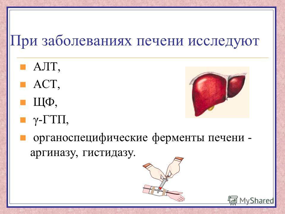 При заболеваниях печени исследуют АЛТ, АСТ, ЩФ, γ-ГТП, органоспецифические ферменты печени - аргиназу, гистидазу.