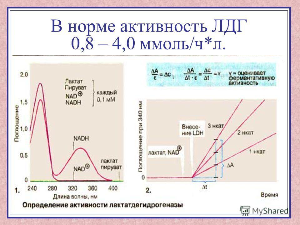 В норме активность ЛДГ 0,8 – 4,0 ммоль/ч*л.