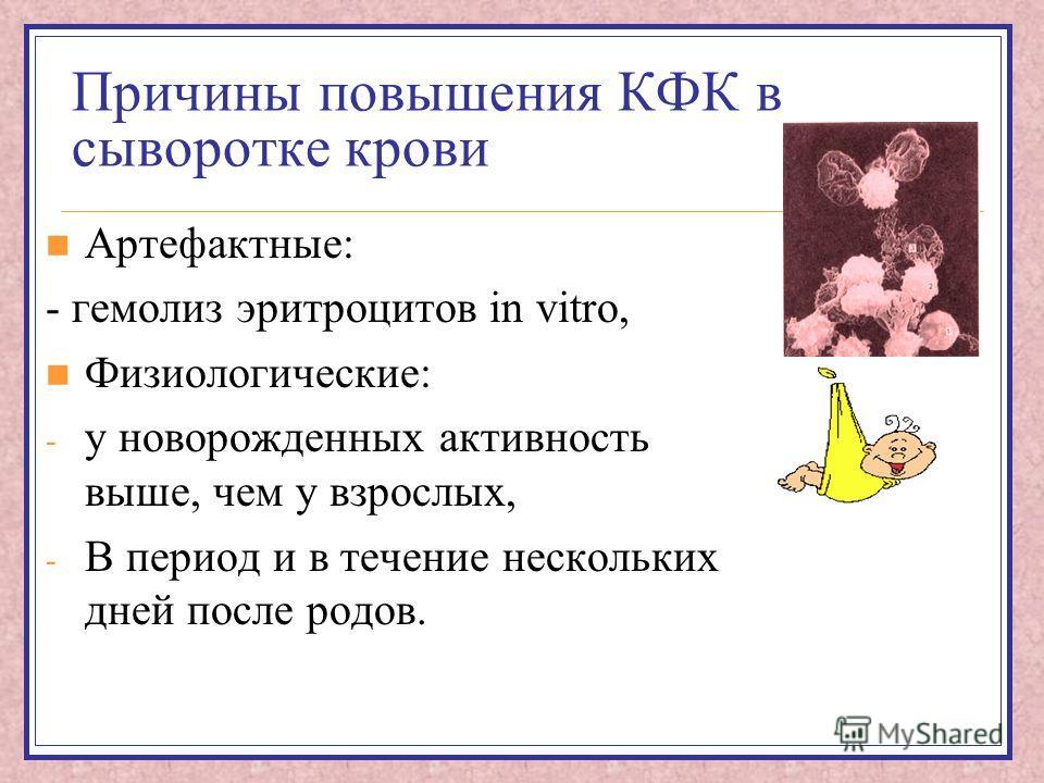 Причины повышения КФК в сыворотке крови Артефактные: - гемолиз эритроцитов in vitro, Физиологические: - у новорожденных активность выше, чем у взрослых, - В период и в течение нескольких дней после родов.