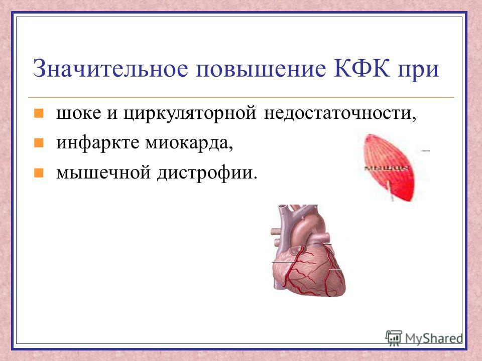 Значительное повышение КФК при шоке и циркуляторной недостаточности, инфаркте миокарда, мышечной дистрофии.