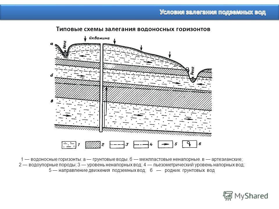 Типовые схемы залегания водоносных горизонтов 1 водоносные горизонты: а грунтовые воды. б межпластовые ненапорные. в артезианские; 2 водоупорные породы; 3 уровень ненапорных вод; 4 пьезометрический уровень напорных вод; 5 направление движения подземн