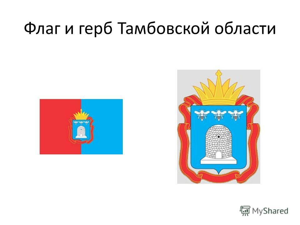 Флаг и герб Тамбовской области