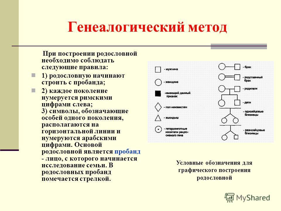 Генеалогический метод При построении родословной необходимо соблюдать следующие правила: 1) родословную начинают строить с пробанда; 2) каждое поколение нумеруется римскими цифрами слева; 3) символы, обозначающие особей одного поколения, располагаютс