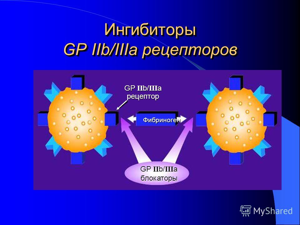 Ингибиторы GP IIb/IIIa рецепторов Фибриноген GP II b/ III a рецептор блокаторы