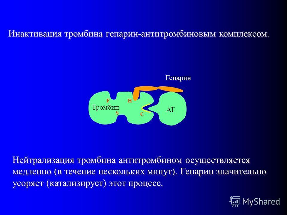 AT Гепарин Инактивация тромбина гепарин-антитромбиновым комплексом. Тромбин HF S C Нейтрализация тромбина антитромбином осуществляется медленно (в течение нескольких минут). Гепарин значительно усоряет (катализирует) этот процесс.