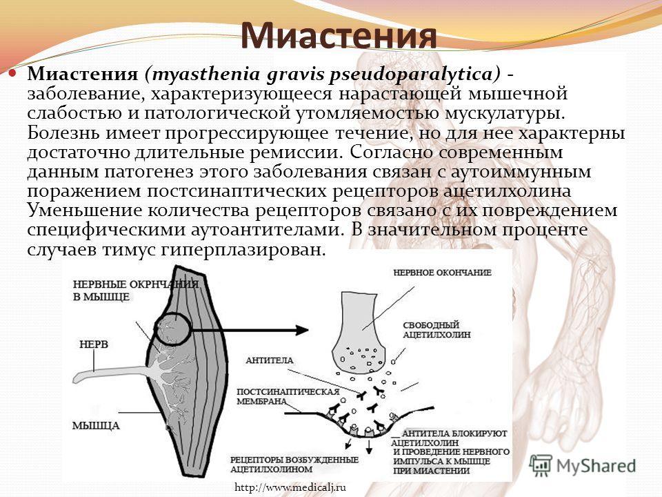Миастения Миастения (myasthenia gravis pseudoparalytica) - заболевание, характеризующееся нарастающей мышечной слабостью и патологической утомляемостью мускулатуры. Болезнь имеет прогрессирующее течение, но для нее характерны достаточно длительные ре