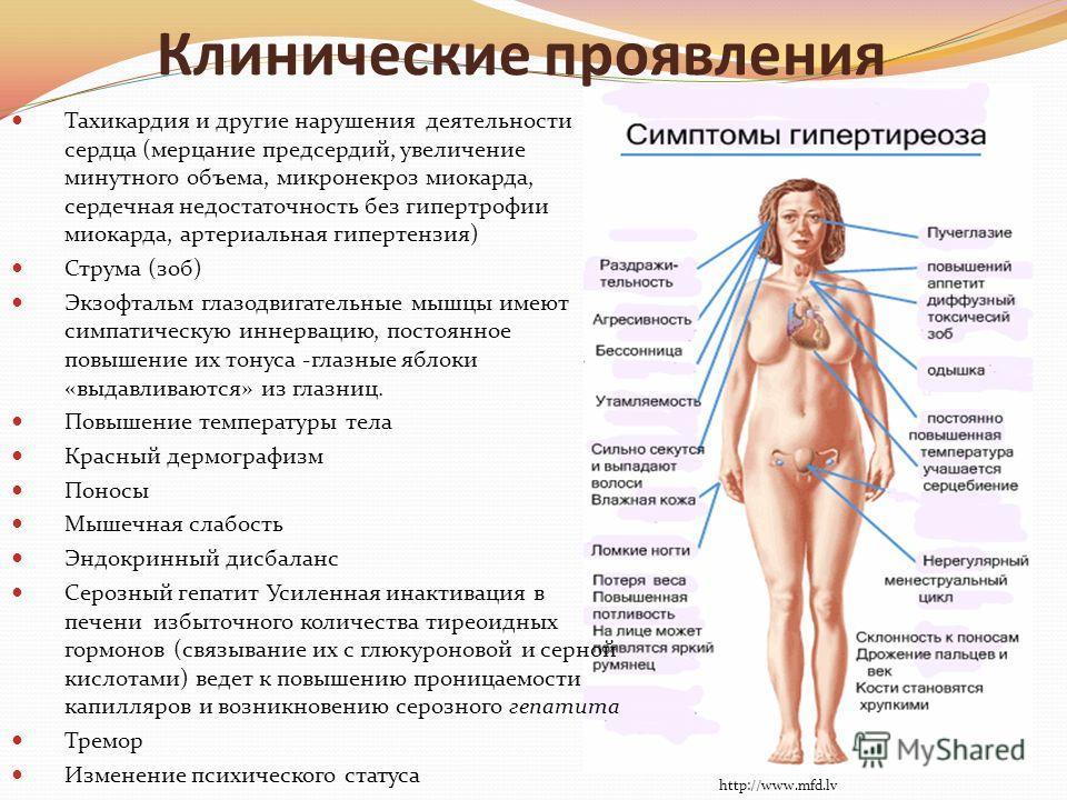 Клинические проявления Тахикардия и другие нарушения деятельности сердца (мерцание предсердий, увеличение минутного объема, микронекроз миокарда, сердечная недостаточность без гипертрофии миокарда, артериальная гипертензия) Струма (зоб) Экзофтальм гл