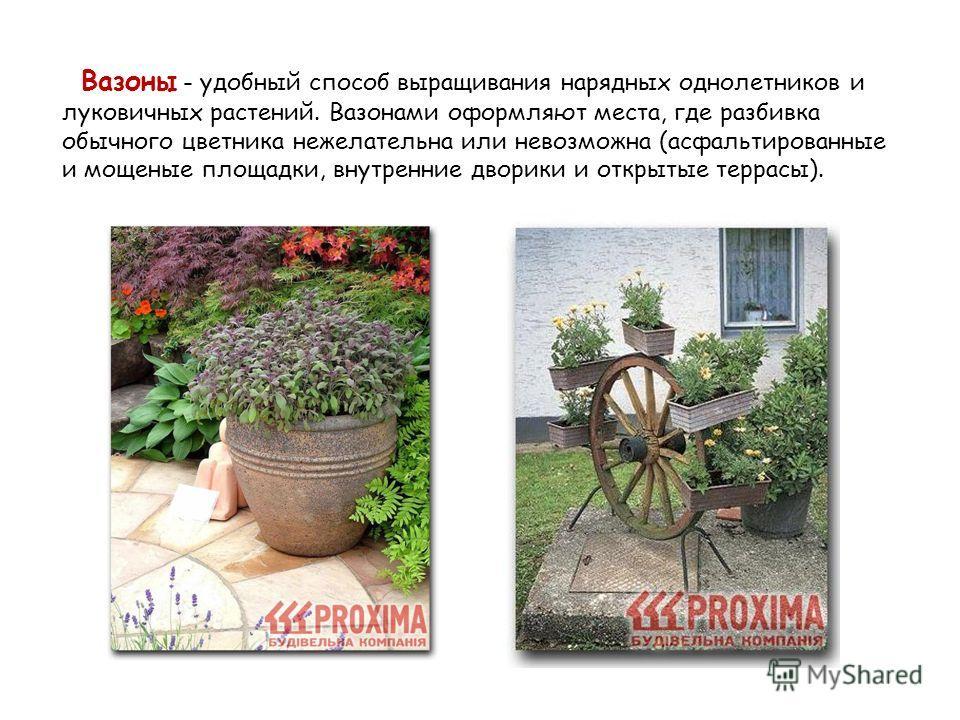 Вазоны - удобный способ выращивания нарядных однолетников и луковичных растений. Вазонами оформляют места, где разбивка обычного цветника нежелательна или невозможна (асфальтированные и мощеные площадки, внутренние дворики и открытые террасы).