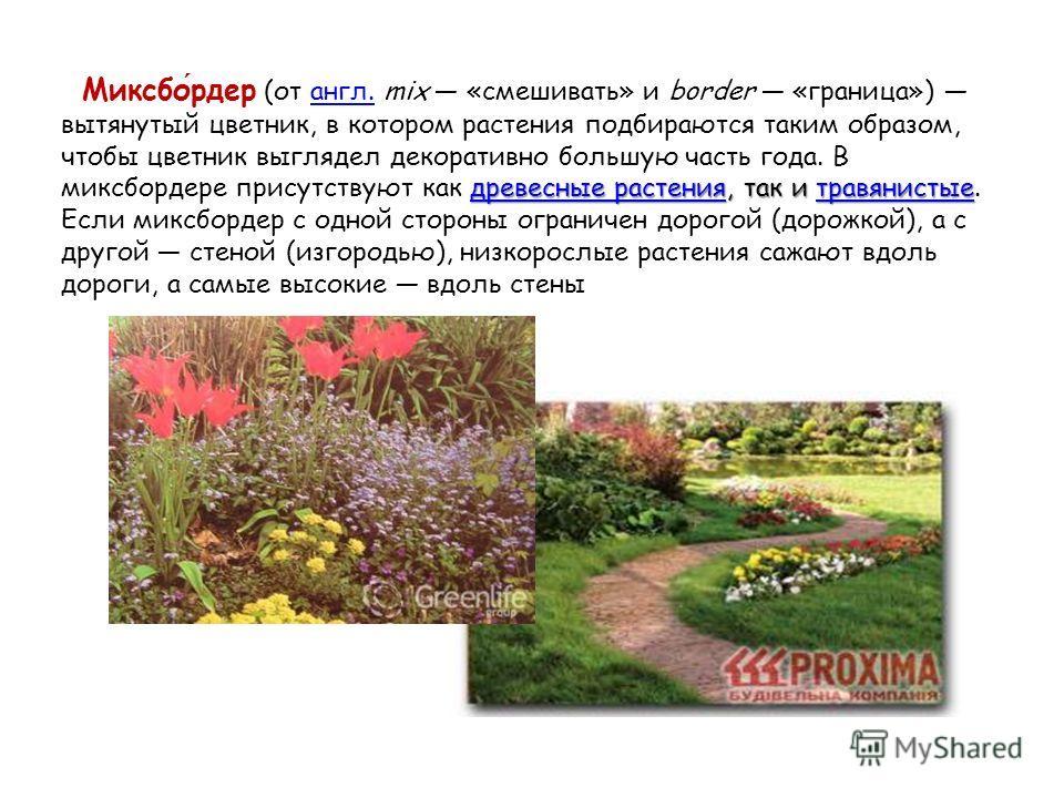 древесные растениядревесные растения, так и травянистые Миксбордер (от англ. mix «смешивать» и border «граница») вытянутый цветник, в котором растения подбираются таким образом, чтобы цветник выглядел декоративно большую часть года. В миксбордере при