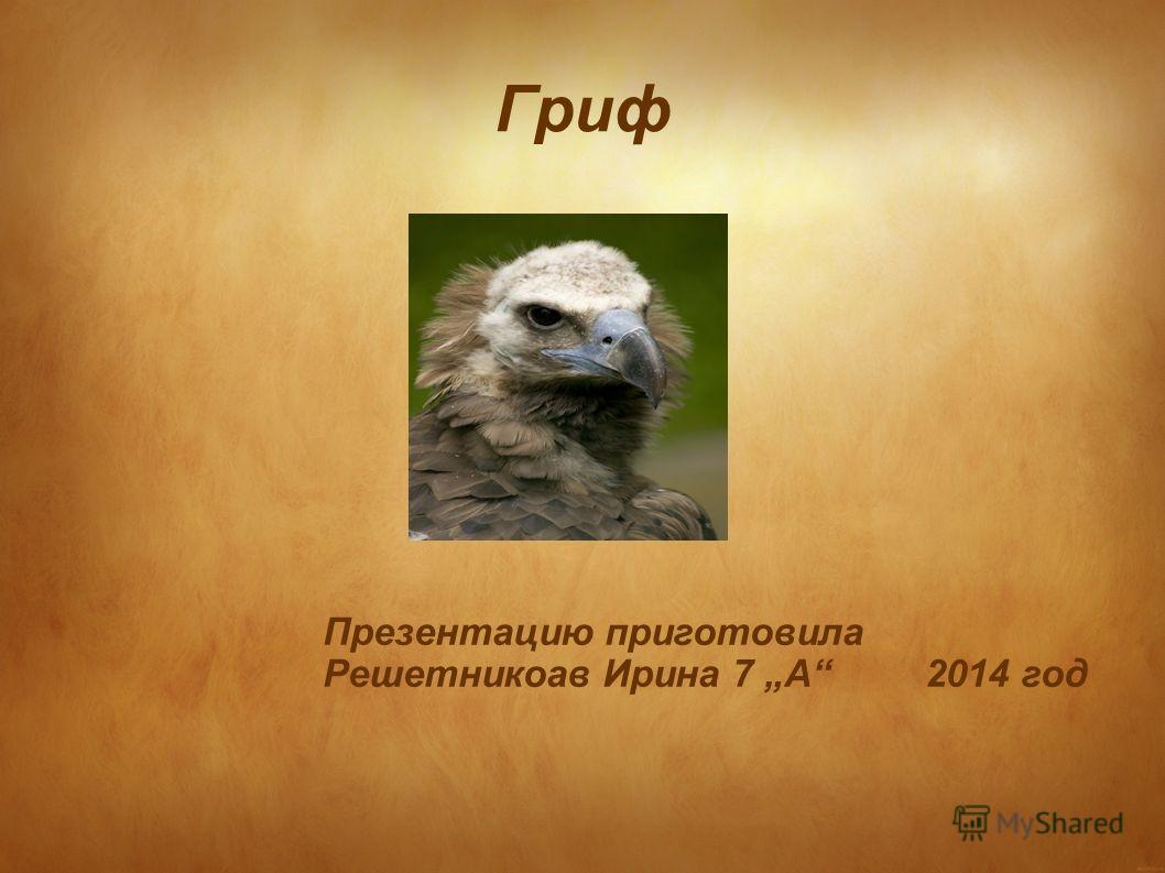 Гриф Презентацию приготовила Решетникоав Ирина 7 А 2014 год