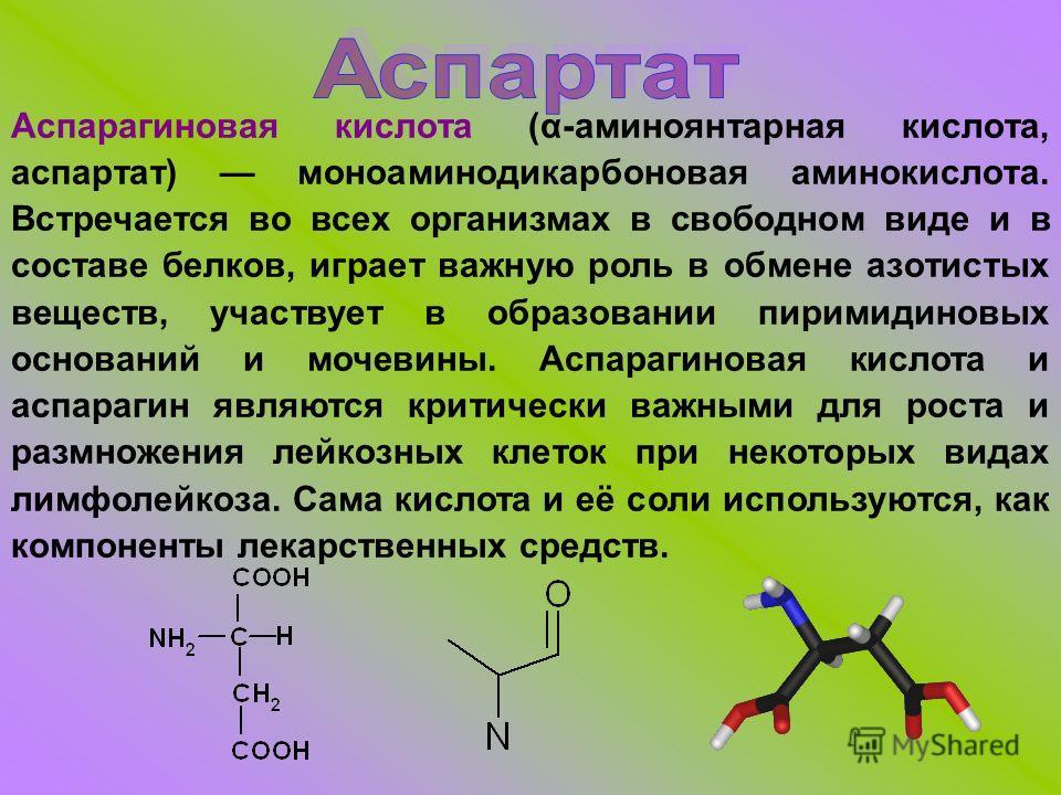 Аспарагиновая кислота (α-аминоянтарная кислота, аспартат) моноаминодикарбоновая аминокислота. Встречается во всех организмах в свободном виде и в составе белков, играет важную роль в обмене азотистых веществ, участвует в образовании пиримидиновых осн