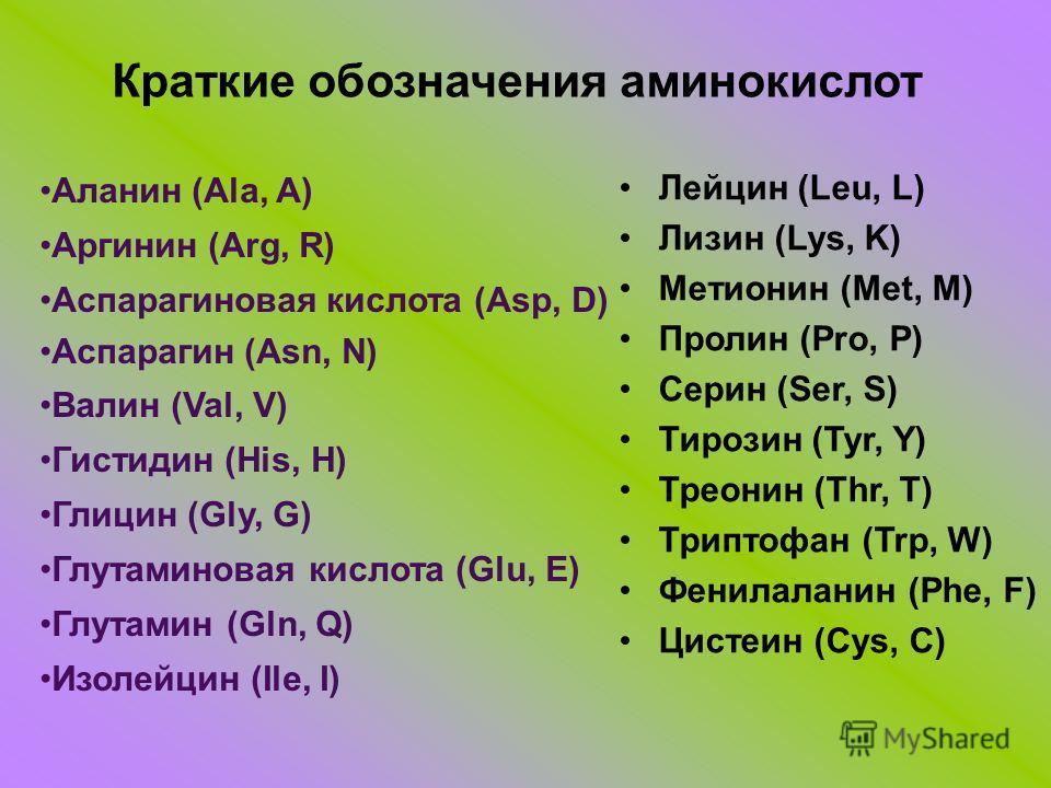 Краткие обозначения аминокислот Аланин (Ala, A) Аргинин (Arg, R) Аспарагиновая кислота (Asp, D) Аспарагин (Asn, N) Валин (Val, V) Гистидин (His, H) Глицин (Gly, G) Глутаминовая кислота (Glu, E) Глутамин (Gln, Q) Изолейцин (Ile, I) Лейцин (Leu, L) Лиз