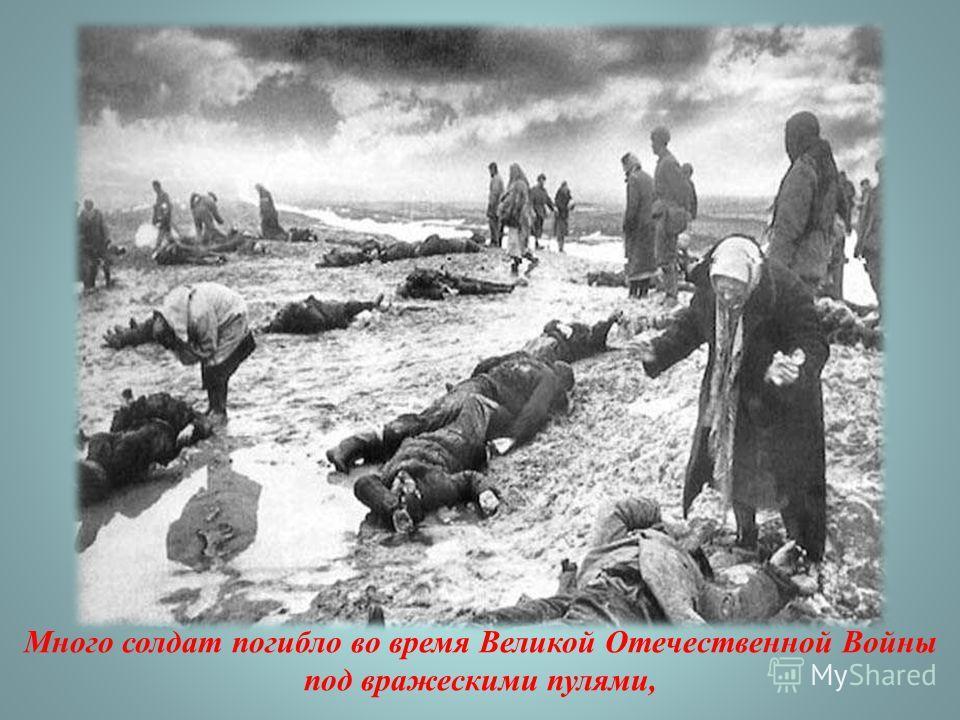 Много солдат погибло во время Великой Отечественной Войны под вражескими пулями,