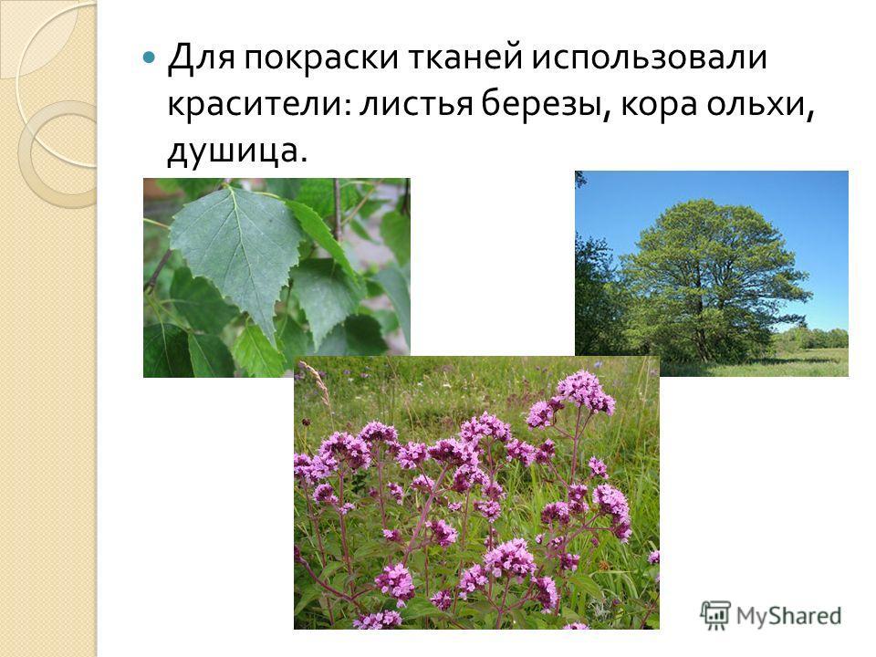 Для покраски тканей использовали красители : листья березы, кора ольхи, душица.