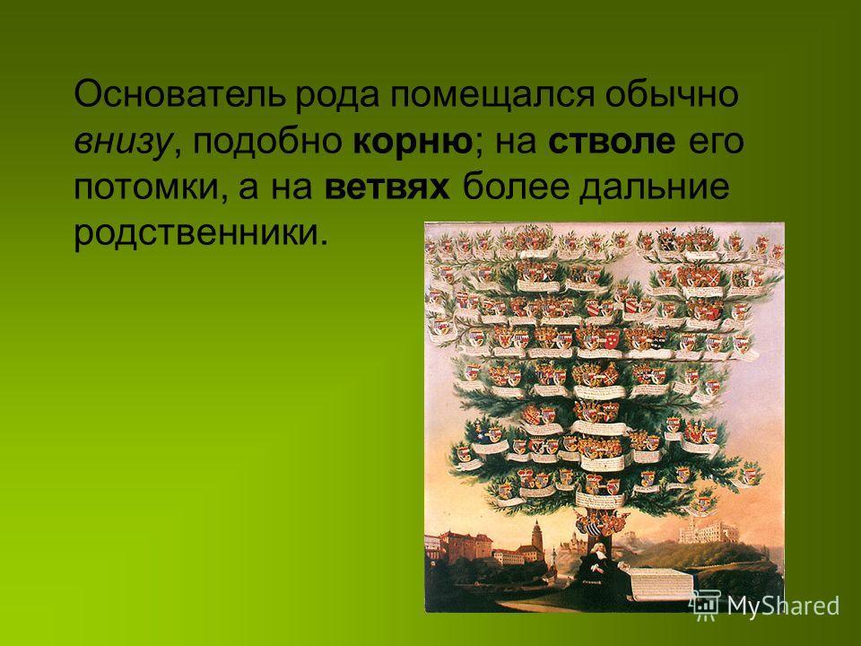 Основатель рода помещался обычно внизу, подобно корню; на стволе его потомки, а на ветвях более дальние родственники.