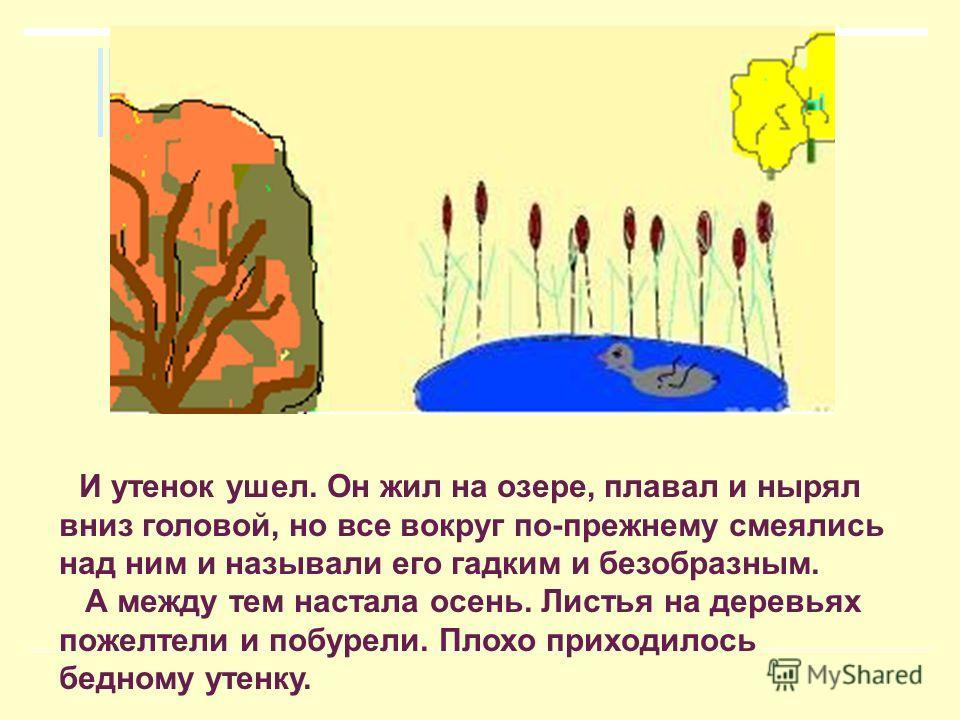 И утенок ушел. Он жил на озере, плавал и нырял вниз головой, но все вокруг по-прежнему смеялись над ним и называли его гадким и безобразным. А между тем настала осень. Листья на деревьях пожелтели и побурели. Плохо приходилось бедному утенку.