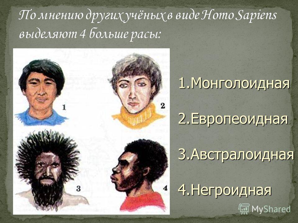 1.Монголоидная 2.Европеоидная 3.Австралоидная 4.Негроидная